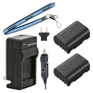 Two DMW-BLF19 Batteries, Charger & Neck Strap for Panasonic Lumix GH3 and GH4 Cameras