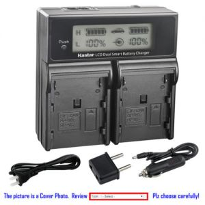 Replacement Battery LCD Dual Fast Charger for Canon BP-970G and Canon V60Hi V65Hi V72